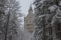 Neuschwanstein Castle in winter time between trees. Fussen. Germany. Royalty Free Stock Photo