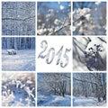 Neve e paesaggi di inverno Fotografia Stock