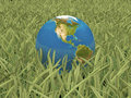 New begining world globe laying on a grass Royalty Free Stock Images