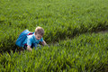 New beginings young boy wearing a backpack bending down to look at the crops growing in a field Stock Photos