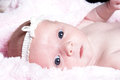 New Born Baby Royalty Free Stock Images