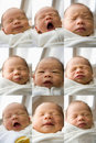 New Born Baby Faces Stock Photography