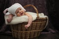 New borng baby in basket dressed rabbit stiled hat Royalty Free Stock Image