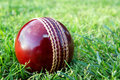 New cricket ball on grass. Stock Photo