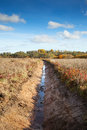 New ditch in field Royalty Free Stock Photos