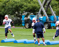 New England Patriots training drills. Royalty Free Stock Photo