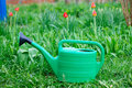 New green watering can standing on grass Royalty Free Stock Photo