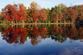 New Hampshire Foliage Stock Image