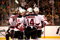New Jersey Devils score! Royalty Free Stock Photography