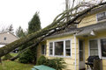 New jersey usa october residential roof damage caused b home by trees falling on a result of the high velocity winds of hurricane Royalty Free Stock Photography