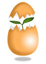 New life from egg stock illustration on white Royalty Free Stock Photography