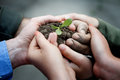 New life farmers hands holding a fresh young plant and environmental conservation concept Stock Photos