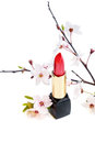 New lipstick with sakura flowers, on white Stock Image