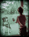 The new neighbours dog vintage style photo of a young boy first meeting through a window with next door Royalty Free Stock Photo