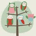 New owls on tree
