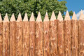 New paling protective fence from sharp logs Royalty Free Stock Photo
