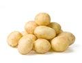 New potato Royalty Free Stock Photo
