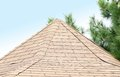 New roof covered with tiles whole background Stock Image