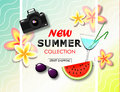 New summer collection sale banner. Exotic tropical background with place for text, flowers, sunglasses, watermelon, camera and sum Royalty Free Stock Photo