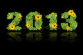 New year 2013. Date lined green leaves and flower. Royalty Free Stock Image