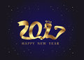 2017 New Year chicken asian