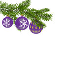 New Year or Christmas background. Firtree branch with purple balls with a pattern.