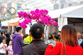 New year flowers in zhuhai flower market the photo was taken as Royalty Free Stock Images