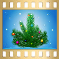 New Year's tree Stock Images