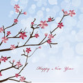 New Year Spring flowers background Stock Photo