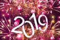 New year 2019 text on colorful background, christmas tree, decoration and lights, holiday concept backdrop Royalty Free Stock Photo