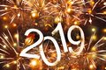 New year 2019 text on colorful background, christmas tree, decoration and lights, holiday concept backdrop