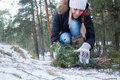 New years preparations young woman picking up pine tree branches for decorations Royalty Free Stock Images