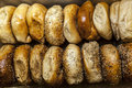 New York Bagels Royalty Free Stock Photos