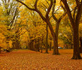 New York City Central Park alley in the Fall. Royalty Free Stock Photo