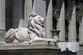 New York City Lion Royalty Free Stock Photos