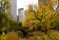 New york city skyline and central park in autumn colorful trees leaves with Royalty Free Stock Photos