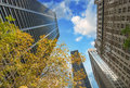 New york city upward view of manhattan buildings with trees and sky Stock Photos