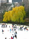 NEW YORK - DECEMBER 3: Ice skaters having fun in Central Park Royalty Free Stock Image
