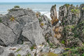 "New zealand coastal rocks patterns of sedimentation and erosion show in finely detailed ""pancake"" rock formations on the west Royalty Free Stock Images"
