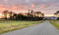 New Zealand Country Road Royalty Free Stock Photo