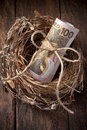 New zealand nest egg money a with a roll of on a wood background Stock Images