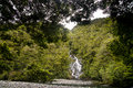 New Zealand, Rain forest Fantail Falls Royalty Free Stock Photo