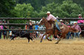 New Zealand Rodeo - Steer roping Royalty Free Stock Photo