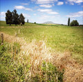 New zealand rural scene north island Royalty Free Stock Photo