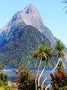 New Zealand Southern Alps Mountains Royalty Free Stock Photo