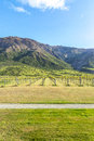 New Zealand Vineyard and Mountains Royalty Free Stock Photo