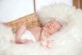 Newborn adorable baby sleeping in basket Stock Images