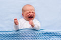 Newborn baby boy on a blue blanket Royalty Free Stock Photo