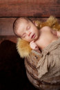 Newborn baby boy sleeping in an antique bucket a wooden well shot the studio with a sheepskin rug and rustic wood background Royalty Free Stock Images