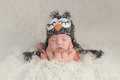 Newborn Baby Boy Wearing an Owl Hat Royalty Free Stock Photo